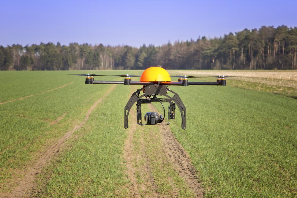 drone vendimia